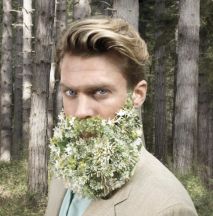 kopparberg beard
